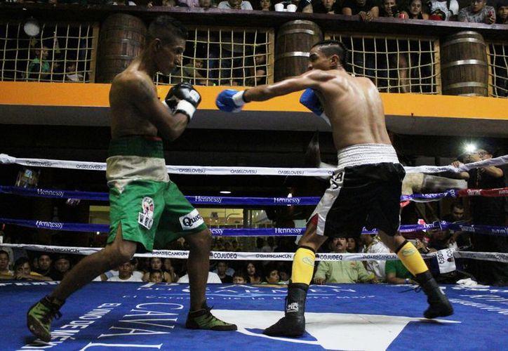 El próximo viernes 31 de agosto a partir de las 19 horas se llevará a cabo la velada boxística en la Arena Colonos. (Raúl Caballero/SIPSE)
