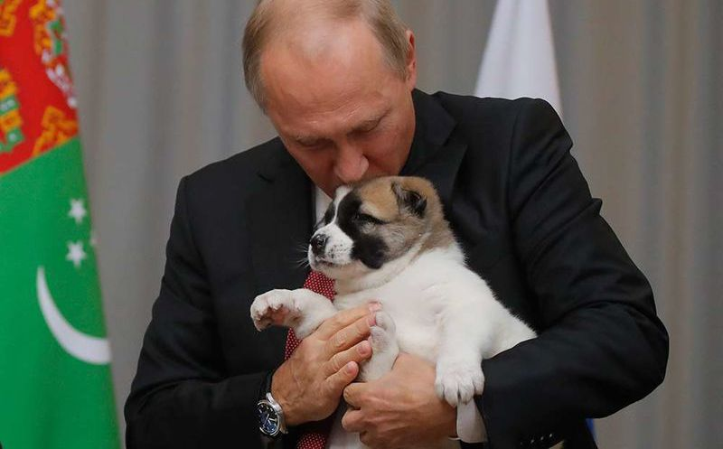 Putin recibe con nostalgía a un cachorro como regalo de cumpleaños