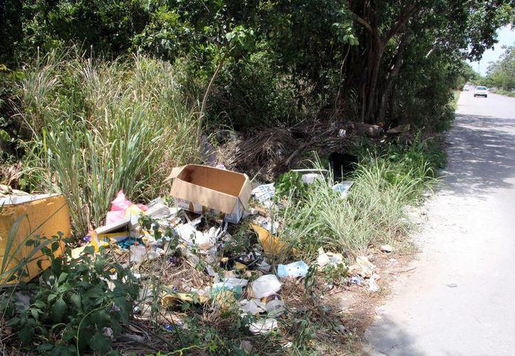 En la ciudad hay innumerables camellones, parques y áreas de maleza que son utilizados como basureros clandestinos, los cuales generan un riesgo para la salud pública. (Paola Chiomante/SIPSE)