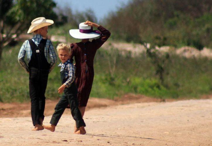 En Bacalar hay mil 200 menonitas, entre hombres y mujeres, establecidos en tres comunidades; su actividad principal es la agricultura. (Harold Alcocer/SIPSE)