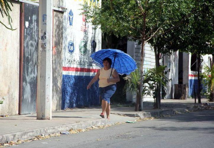 Los meridanos recurren a sombrillas para protegerse del sol. (José Acosta/SIPSE)