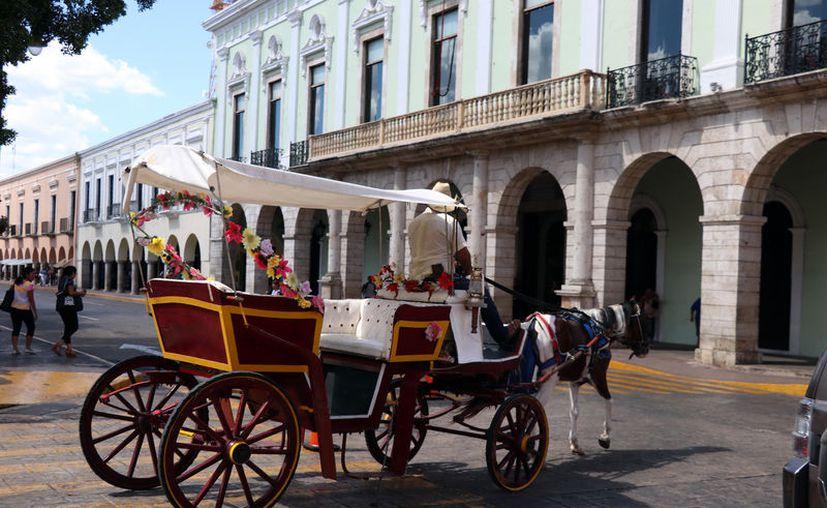 El marco jurídico para las calesas eléctricas será similar al que se aplica en Jalisco. (Novedades Yucatán)
