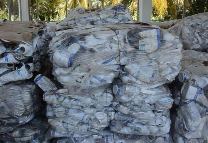 En lo que va del año se han acopiado aproximadamente seis toneladas y media de envases, informó la gerencia de la Senasica. (Eddy Bonilla/SIPSE)