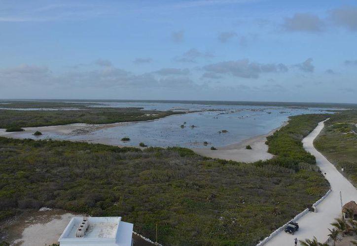 Aunque la zona contemplada para el desarrollo ecoturístico Villas Xixim está fuera del Tratado Ramsar, la Conanp consideró el proyecto no viable. (Gustavo Villegas/SIPSE)