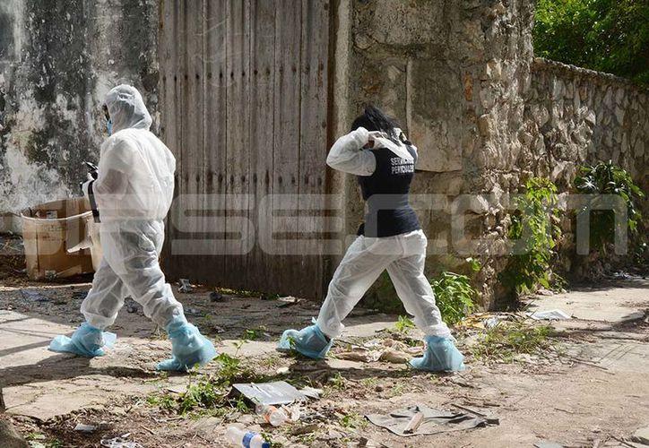 La FGE inició las investigaciones para encontrar la procedencia de los restos. (Victoria González/SIPSE)