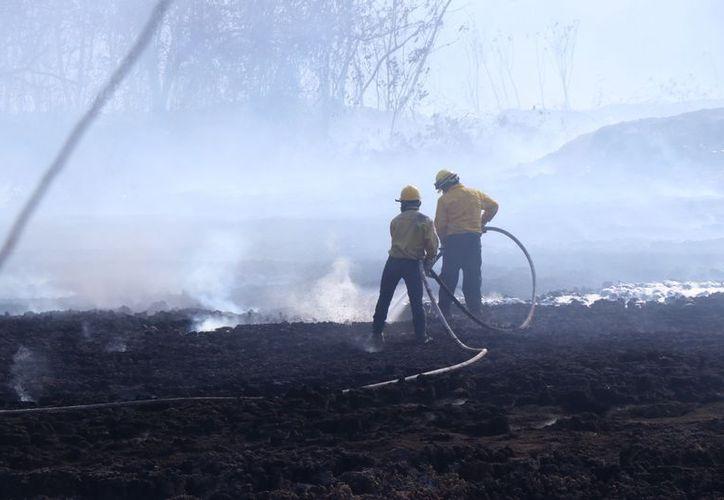 El humo afecta, sobre todo, a vecinos de la zona habitacional de Los Tamarindos. (Fotos: Jorge Acosta/ Milenio Novedades)