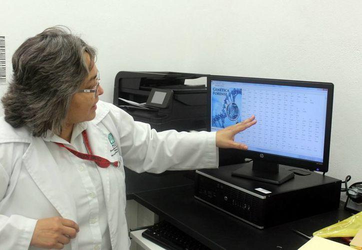 El laboratorio de la Fiscalía General del Estado tiene los marcadores de ADN de los yucatecos. (Milenio Novedades)