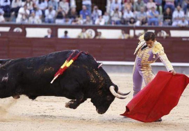 El joven torero mexicano Joselito Adame tuvo una gran actuación en la Monumental Plaza de Las Ventas de Madrid, en el marco de la Feria de San Isidro 2015. (EFE)
