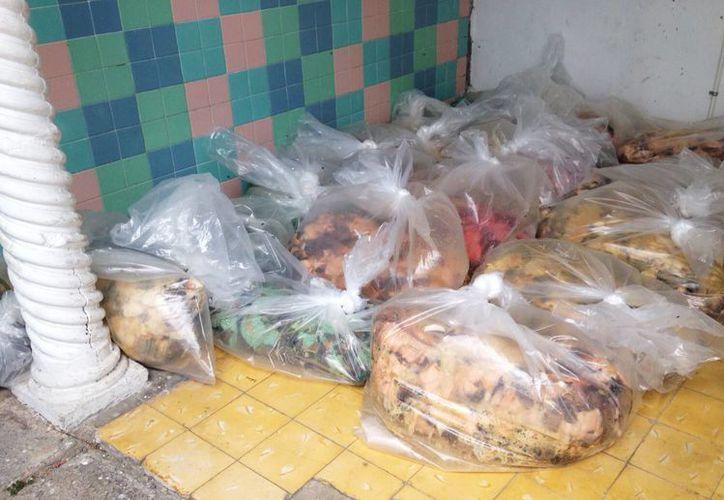 Imagen de los paquetes de caracol blanco asegurados a un conductor en Chicxulub Puerto. (Milenio Novedades)
