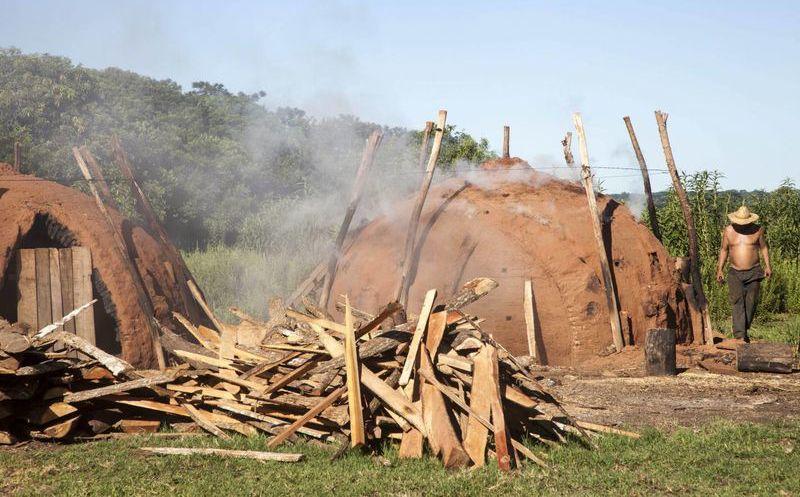 Paraguay Millonaria Exportación De Carbón Vegetal Pero