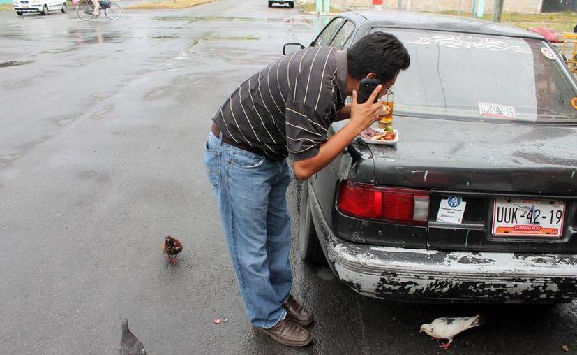 Las palomas representan un riesgo de salud para quienes consumen alimentos en la vía pública. (Harold Alcocer/SIPSE)