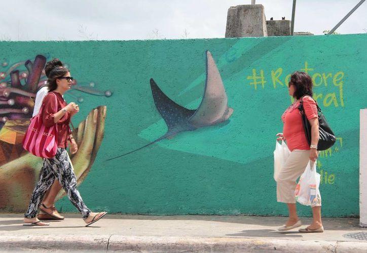 Dos artistas urbanos del proyecto Restore Coral, plasmaran sus obras en Cozumel.  (Gustavo Villegas/SIPSE)