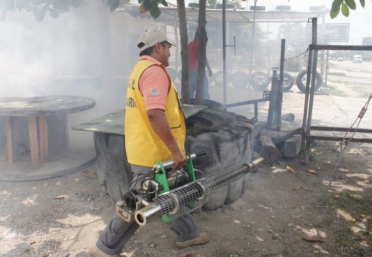 La SESA adelanta las jornadas de fumigación. (Sergio Orozco/SIPSE)