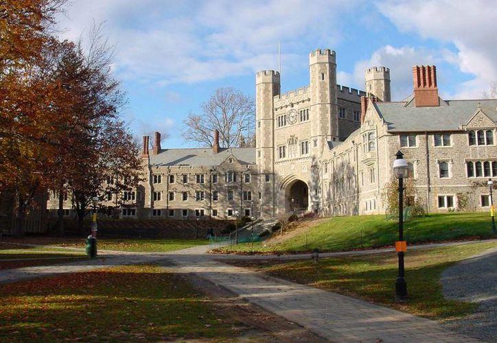 La Universidad de Princeton cuenta con una importante galería de arte que expone obras de Monet, Goya y Andy Warhol, entre otros eminentes artistas. (metro.us)
