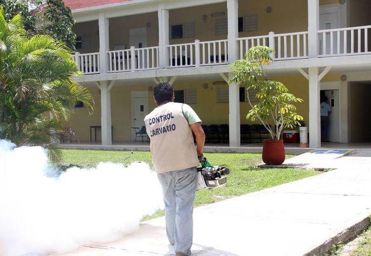 Personal del departamento de vectores fumigarán en las escuelas. (Cortesía/SIPSE)
