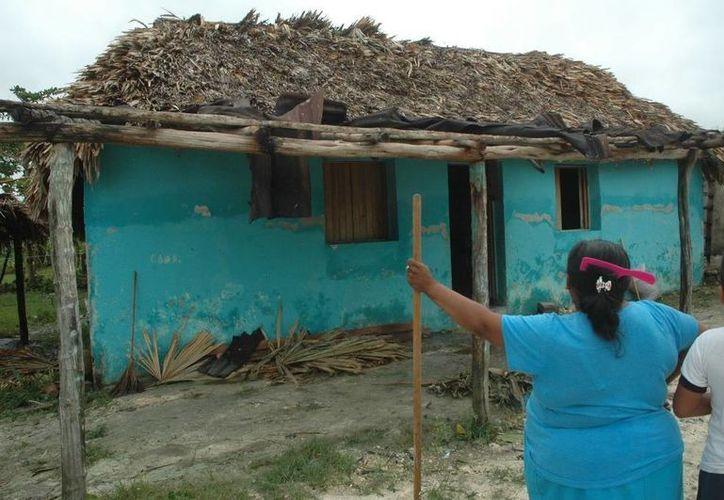 Existen por lo menos 200 familias que viven en casas de cartón o de madera. (Edgardo Rodríguez/SIPSE)