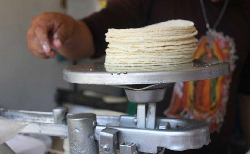 Representantes de la Cámara Nacional de la Industria de Producción de Masa y Tortilla de diversos municipios, se reunieron para pedir una homologación de criterios para su sector. (Daniel Pacheco/SIPSE)