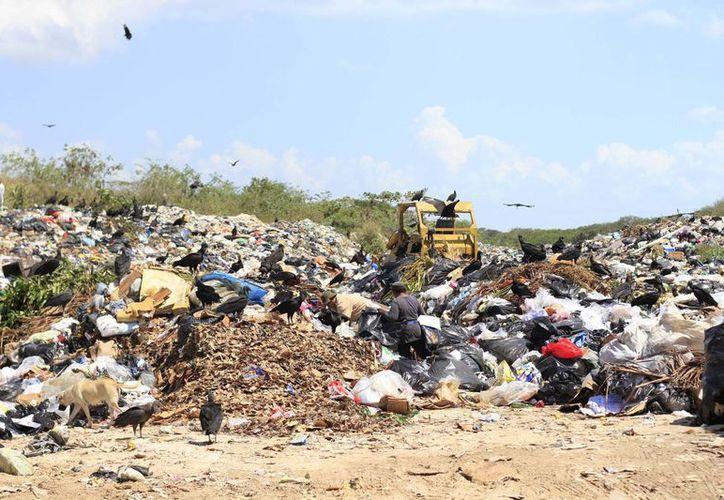 Las autoridades ambientales buscan una solución para el problema de los residuos sólidos en Chetumal. (Redacción/SIPSE)