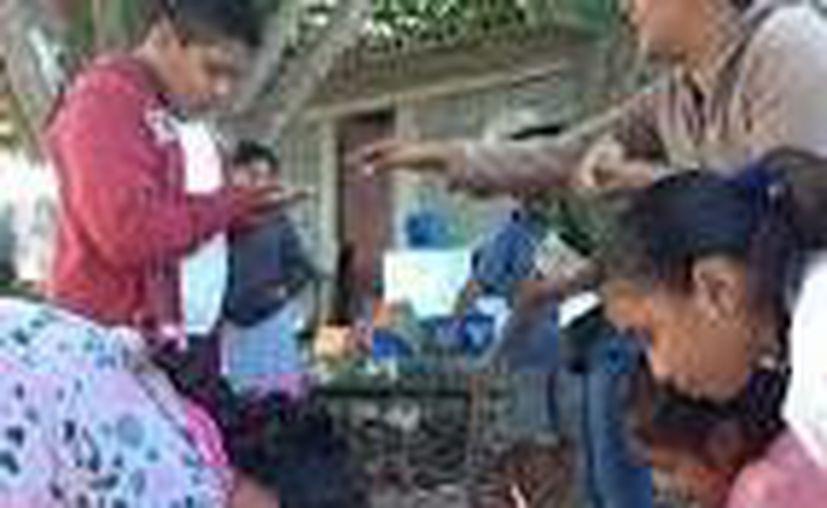 Los participantes del programa de huertos verticales, principalmente amas de casa, quieren integrar una cooperativa productora de hortalizas.  (Luis Ballesteros/SIPSE)
