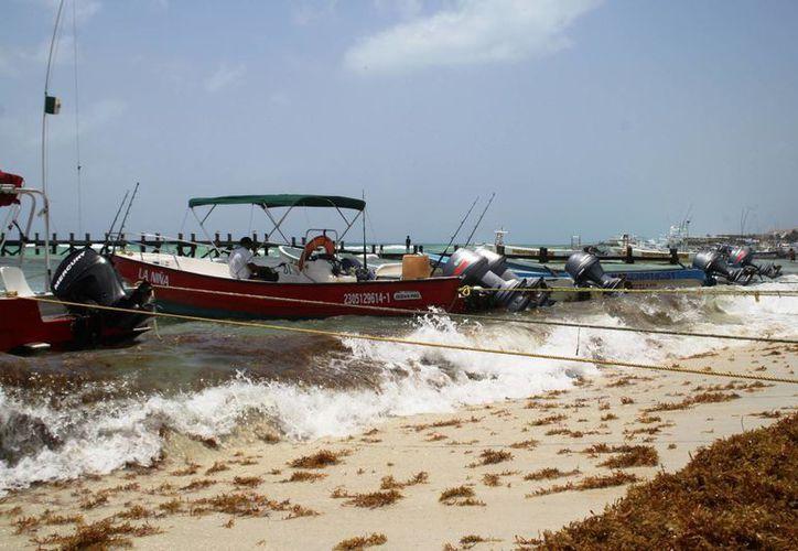 La alerta de 'mar de fondo' en las costas locales afectó la demanda de tours acuáticos. (Octavio Martínez/SIPSE)
