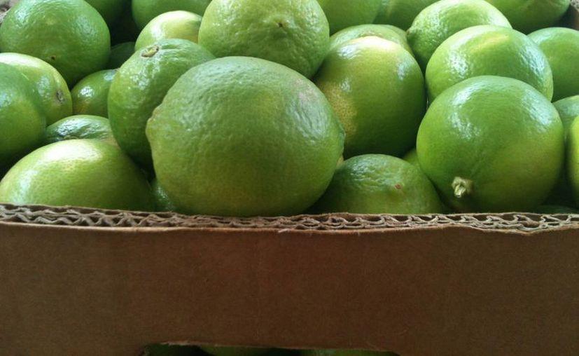 El problema que ahora enfrentan los productores citrícolas es la baja en el precio de sus productos al acumularse en los mercados. (SIPSE)