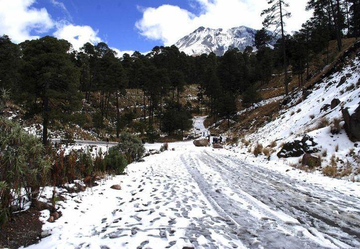 Desde la primera nevada en el Nevado de Toluca, que se registró el pasado 13 de enero, hasta el momento, se han atendido a 79 personas por diferentes causas. (Archivo/Notimex)