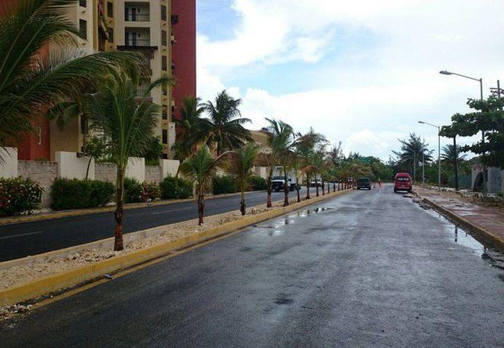 El camellón central de Punta Sam se embelleció con la reforestación que se llevó a cabo. (Redacción/SIPSE)