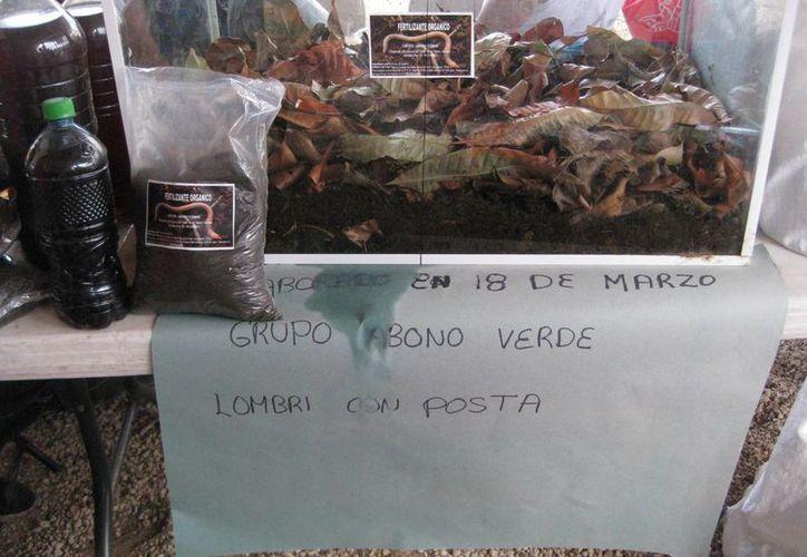Un grupo de mujeres comercializa el abono orgánico. (Javier Ortiz/SIPSE)