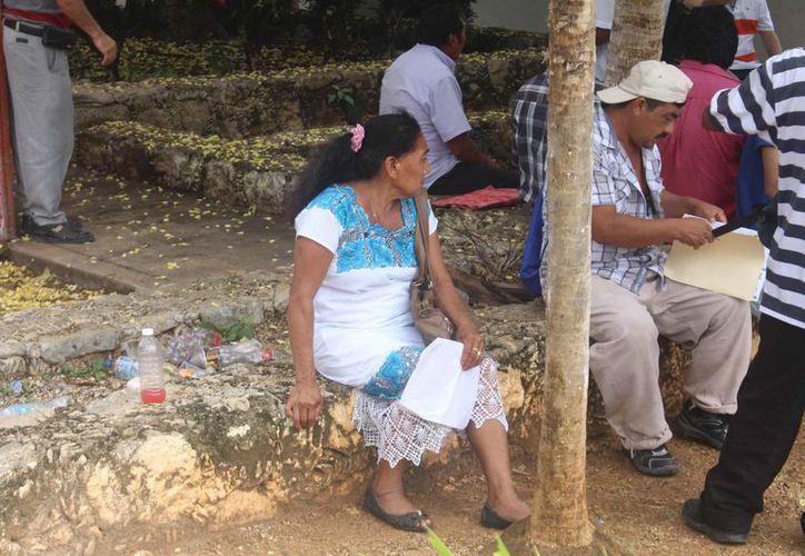 Son alrededor de 20 familias que viven en la comunidad enclavada en la selva que solicitan los diferentes servicios. (Jesús Caamal/SIPSE)