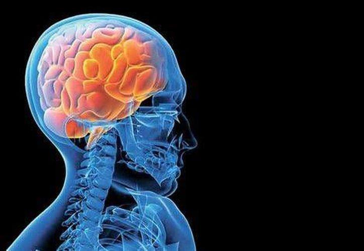 Por medio de la Estimulación Cerebral Profunda (ECP), muchos pacientes recuperan la capacidad de realizar sus actividades diarias normales. (Milenio Digital)