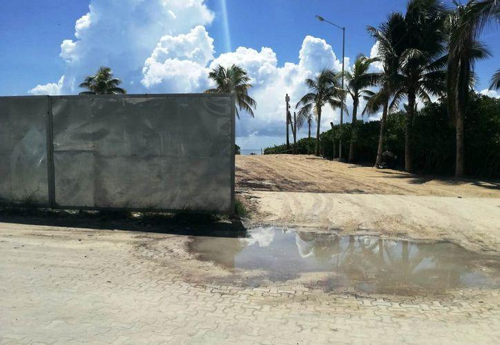Desarrolladora de Proyectos It SAPI, realizó labores de preparación sin autorización, y retiró la vegetación de la zona. (Octavio Martínez/SIPSE)