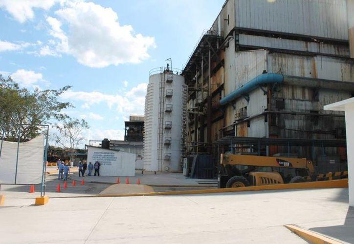 Productores del ingenio San Rafael de Pucté prevén exportar a Estados Unidos solamente poco más de un millón y medio de toneladas de azúcar. (Edgardo Rodríguez/SIPSE)