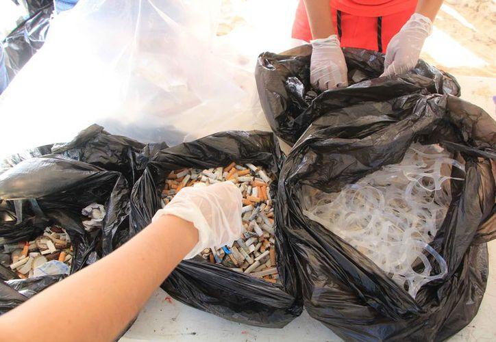 Se llevarán a cabo cuatro eventos de limpieza en Playa Gaviotas. (Redacción/SIPSE)