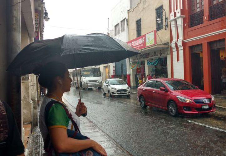 A pesar de la lluvia, se mantendrán las temperaturas de calurosas a muy calurosas durante los próximos días. (SIPSE)