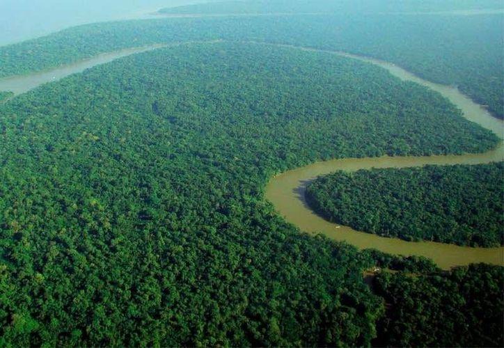Brasil, gracias sobre todo a que cuenta con el Río Amazonas, es el país con mayor reserva de agua dulce en todo el mundo. (rpp.com.pe)