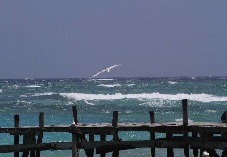 Pescadores no encontraron rastro de los desparecidos en el mar. (Ángel Castilla/SIPSE)