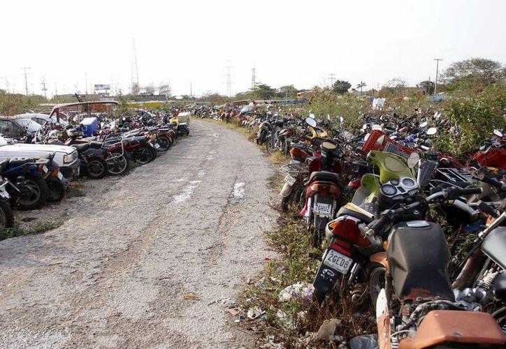 Más de ocho mil vehículos abandonados permanecen en las zonas de resguardo de la SSP . (Juan Albornoz/SIPSE)