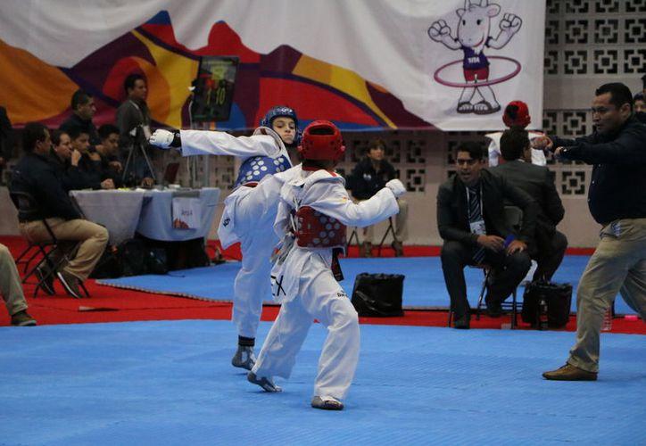 Se desarrolló ayer el tercer día de actividades de la disciplina de tae kwon do. (Raúl Caballero/SIPSE)