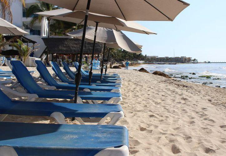 Los hoteleros tratan de mantener las playas sin sargazo. (Adrián Barreto/SIPSE)