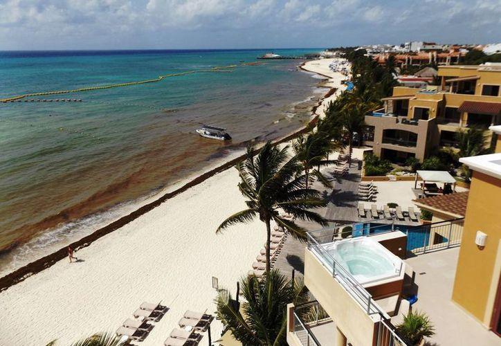 Muchos hoteles que se ubican en la zona costera realizaron, por su cuenta, estudios de impacto ambiental, para comenzar con las labores de recuperación. (Daniel Pacheco/SIPSE)