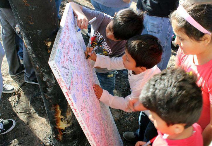 Fans colocan ofrendas cerca del sitio donde ocurrió el mortal accidente de Paul Walker, en Valencia, California. (Agencias)