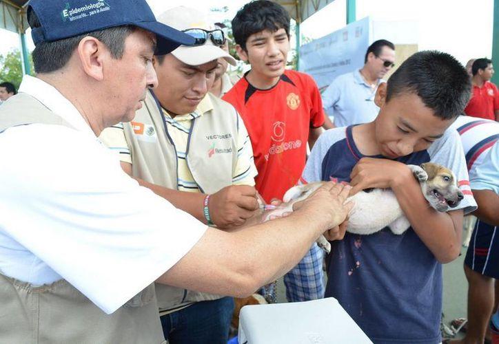 se instalarán puestos de vacunación en toda la ciudad y los poblados de la zona maya. (Rossy López/SIPSE)