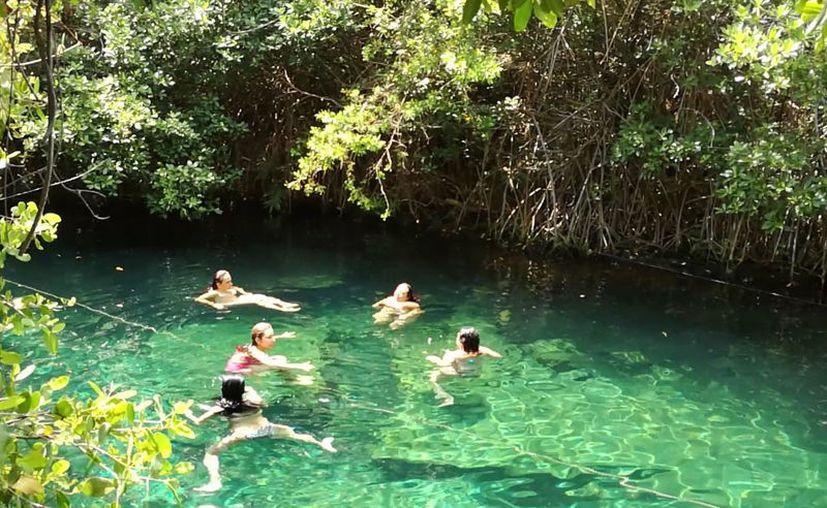Más cenotes se irán rehabilitando para que tengan, espacios que permitan realizar una variedad de  actividades,  dentro de los mismos. (Foto: Sara Cauich/SIPSE).