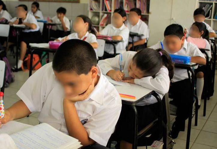 Siete de cada 10 estudiantes de primaria y secundaria apenas alcanzan conocimientos básicos. (Archivo/SIPSE)