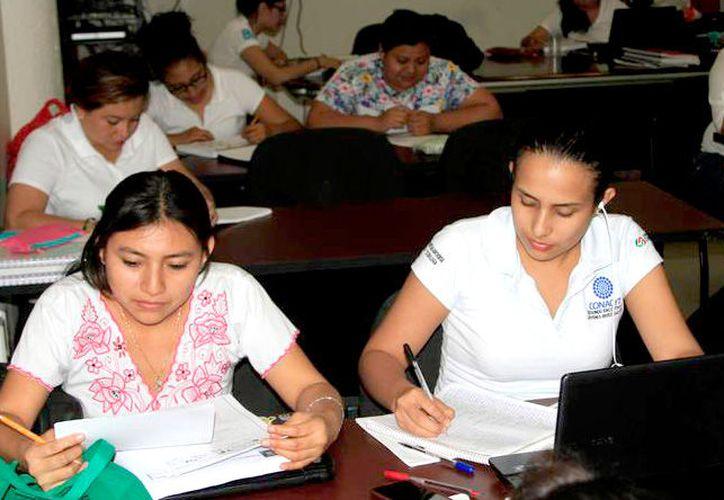 El obstáculo por el que los jóvenes no tuvieron una beca es porque el programa no se alineó a las áreas de conocimiento. (Foto: Alejandra Carrión / SIPSE)