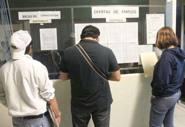 Las empresas sólo ofrecen empleo a personas que estudiaron la secundaria y preparatoria. (Hugo Zúñiga/SIPSE)