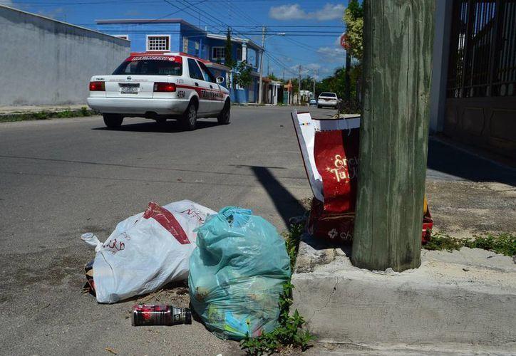 En el fraccionamiento Francisco de Montejo, donde se supone comenzaría el proyecto de separación de basura, aún se observan muchos desechos en las calles. (Milenio Novedades)