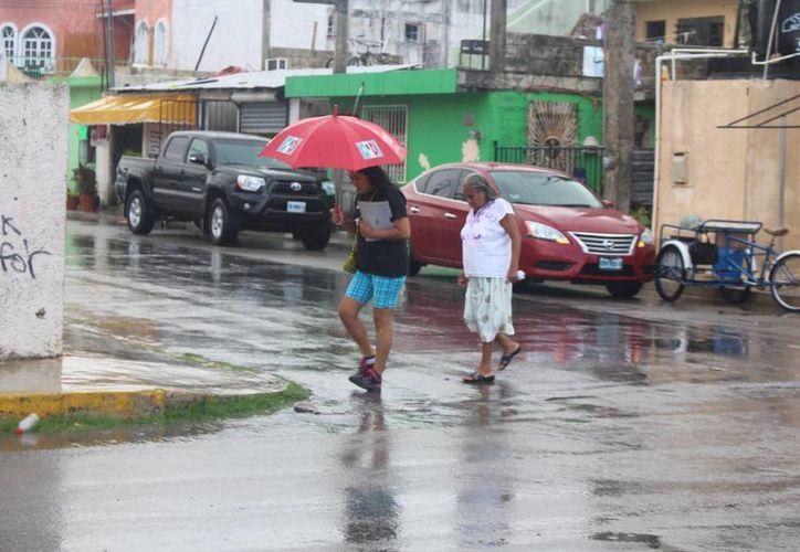 Las lluvias que se presentaron en la localidad la tarde de ayer, debido a los remanentes de la onda tropical número 26, provocaron poca actividad en las calles, además del uso de impermeables y paraguas. (Luis Ballesteros/SIPSE)