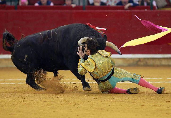Juan José Padilla tuvo una recuperación rápida que le permitió salir a torear de nuevo y llevarse los aplausos de los aficionados a la Fiesta Brava.(EFE)