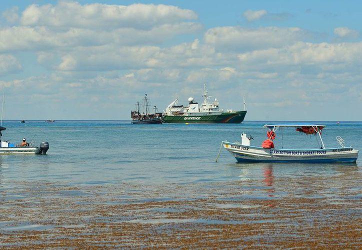 El barco MV Esperanza llegó este lunes a Cozumel y podría permanecer en las aguas de la isla hasta el próximo viernes. (Gustavo Villegas/SIPSE)